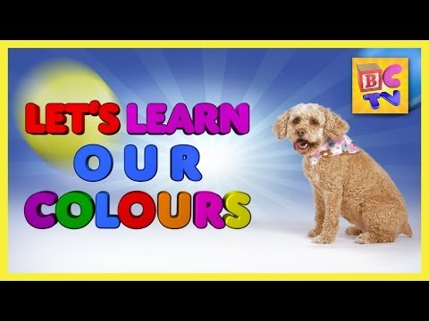 Learn Colors for Kids - Teach preschool and toddlers their colors in English