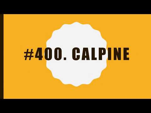 #400 Calpine|10 Facts|Fortune 500|Top companies in United States