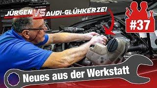 Jürgen am Limit - allein gegen die Audi-Glühkerze! 45 Jahre Erfahrung vs. drohende Kostenexplosion