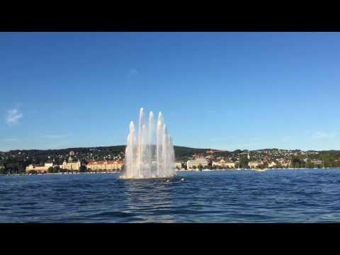 The Zurich Life