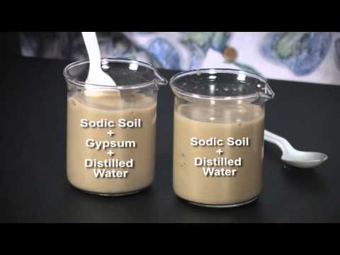 Visualizing Soil Properties: Dispersion And Flocculation