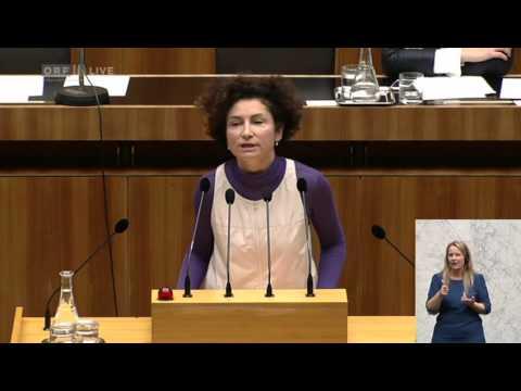 029 Plenarsitzung des Nationalrates Teil 2 Alev Korun Grüne 1597668081