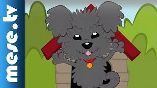 Kalap Jakab: Pumi (dal, rajzfilm gyerekeknek) | MESE TV