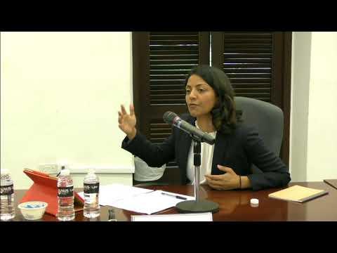 The Singapore Symposium in Legal Theory 2018: Talk by Dr Ashwini Vasanthakumar