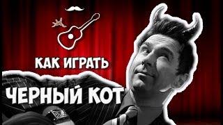 БРАВО - ЧЕРНЫЙ КОТ (аккорды на гитаре) Играй, как Бенедикт! Выпуск №2