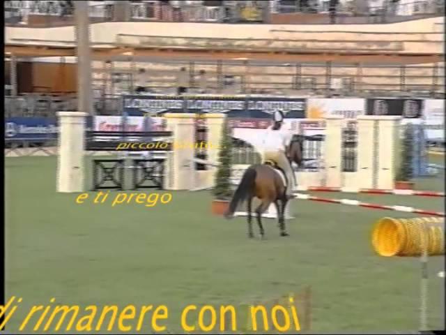 Merlino agility vintage.m4v