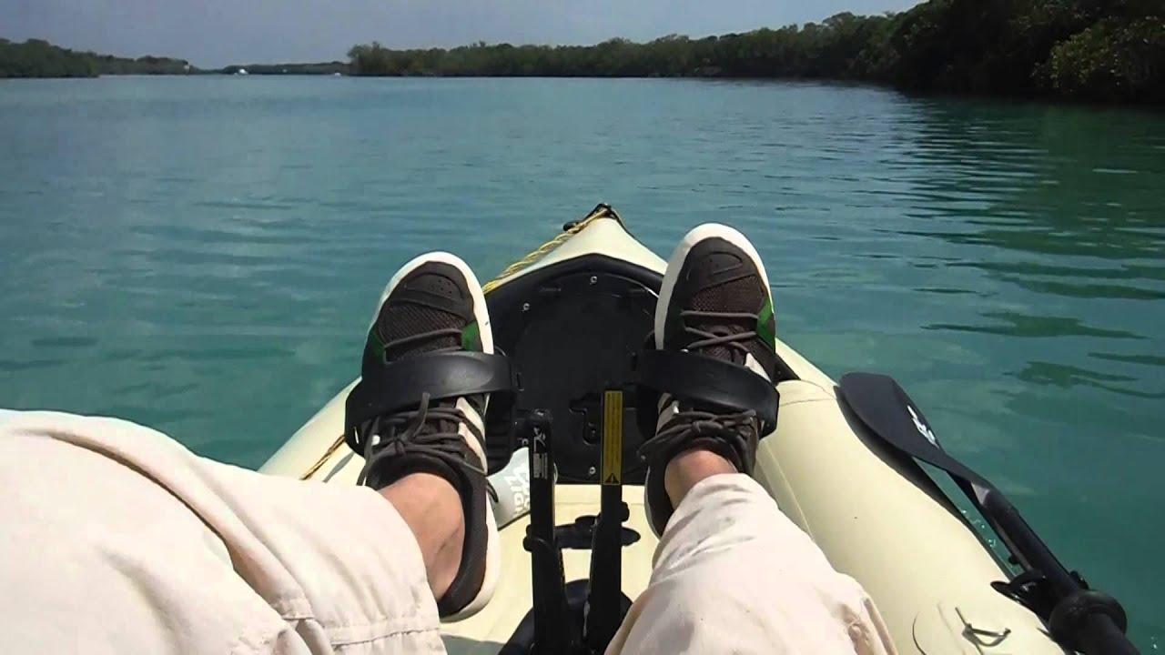 Kayaking along the mangrove islands of Stump Pass Florida ...