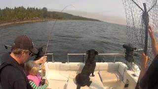 Port Hardy Chinook fishing with 6 year old miss B
