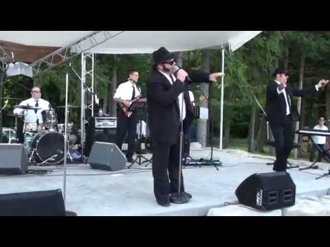 The Blues Brothers (Ultimate Tributes) performing at Quai Du Vin Estate Winery 2014