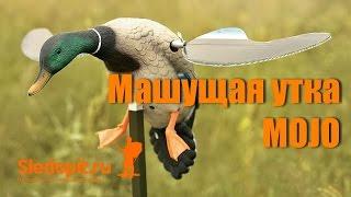 Обзор машущей крыльями чучела утки MOJO