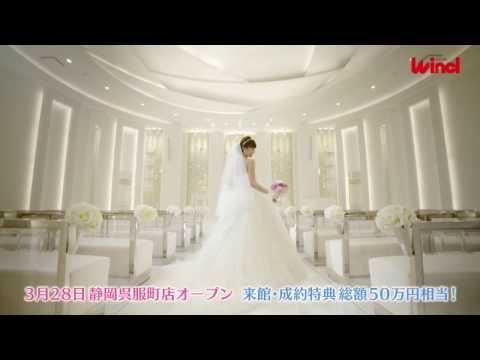 ウインクル TVCM2017年3月4月放映編