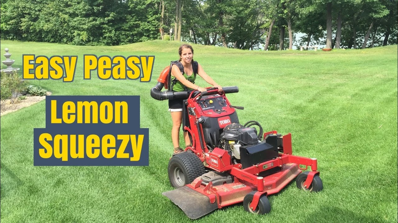 Fall Clean Up Leaf Removal Tips Plus Help Bidding Woodbury
