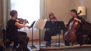 Mozart String Quartet 13 in D minor K 173