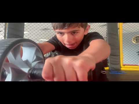 Motivation Training System Alex Lee System Martial Arts