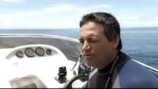 Un reportage de Thalassa sur l'île Maurice