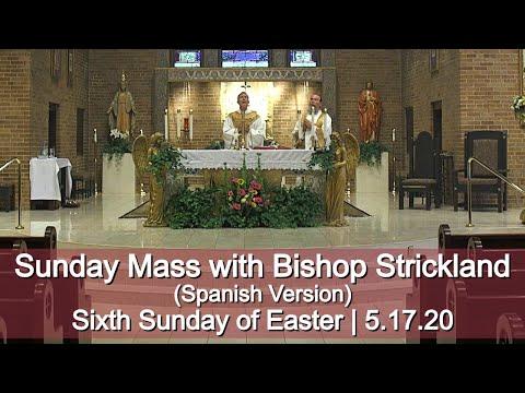 El obispo Strickland celebra la misa 5-17-20 HD