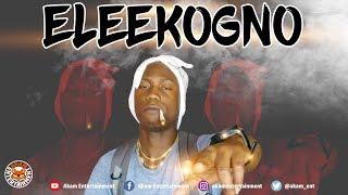 Eleekogno - Killy Killy - May 2018