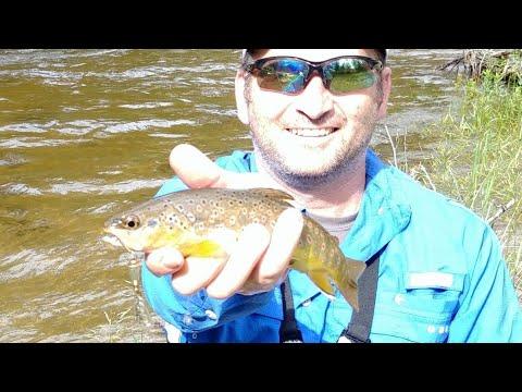 Trout Fishing Poudre River Kelly Flats Colorado Part 1