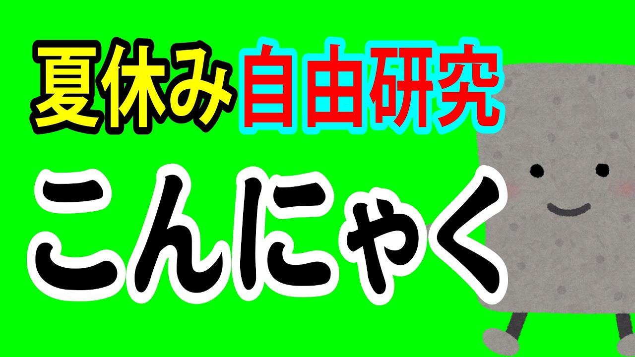 夏休みの自由研究はコンニャクがいい!!