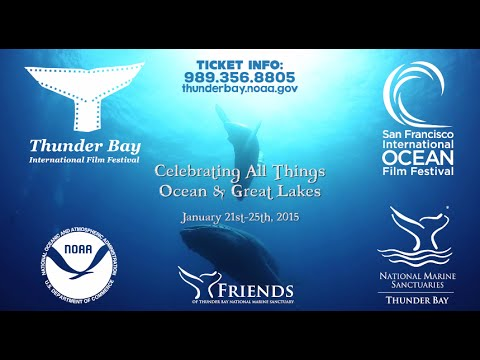 2015 Thunder Bay International Film Festival Trailer