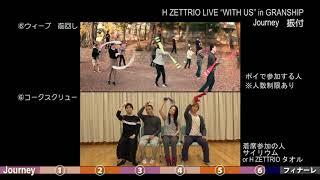 Journey : H ZETTRIO LIVE in Granship 振付概要
