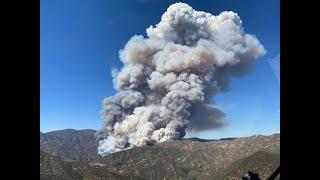 Live: Lake Hughes Fire Burns 50 Acres | NBCLA