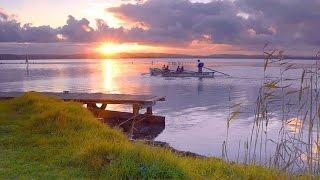 видео Рыбалка без границ центральный форум рыбаков вести с водоемов карась