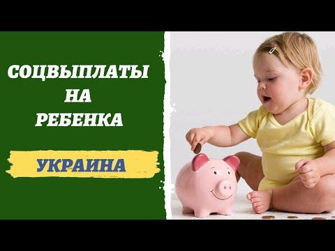 Социальные выплаты на детей в 2020 году Украина. Интервью с юристом Юлией Дубенко