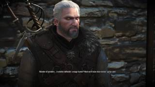 The Witcher 3: Wild Hunt - Part 261 -- Novigrad, Closed City II [Help Witch Hunter]