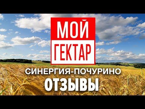 Земельный эксперт на участке