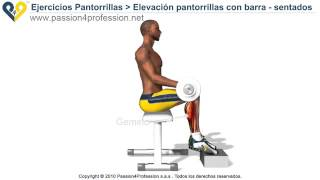 elevacin pantorrillas con barra sentados ejercicios para gemelos