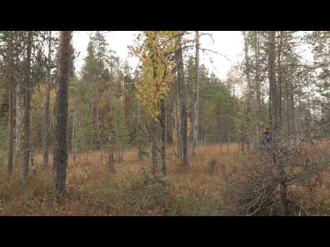 Making Of shooting with drone in Finland forest with Guillaume Marion Pôles d'images