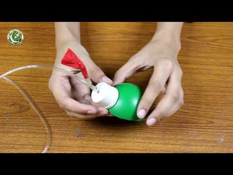 How To Make Working Model Of Heart And Circulatory System Of