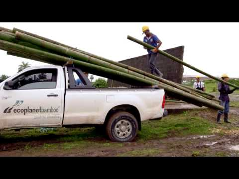 Sustainable Bamboo Plantations - EcoPlanet Bamboo's Mission Presented By CEO Troy Wiseman
