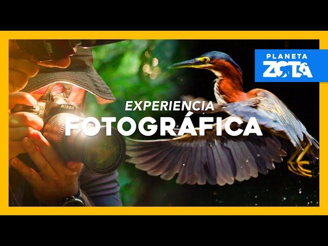 Ep. 3 ¡Cuando la fotografía y la naturaleza convergen! │ Planeta Zota