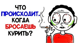 Что происходит, когда бросаешь курить? [AsapSCIENC