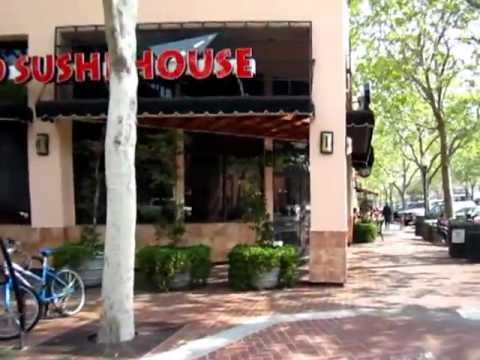 Tourist at home - Palo Alto, CA