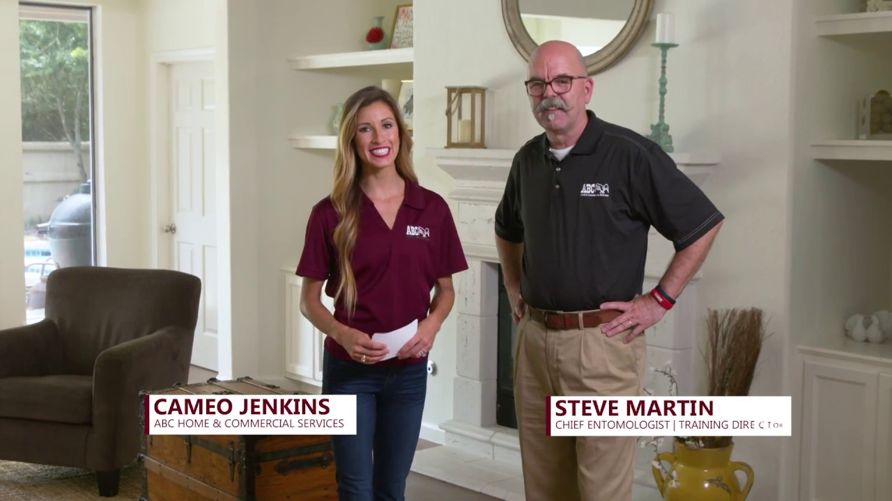 Abc Home And Commercial Services Orlando Termites