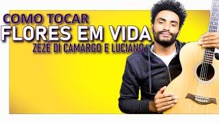 COMO TOCAR - Flores em Vida (Zezé di Camargo e Luciano)