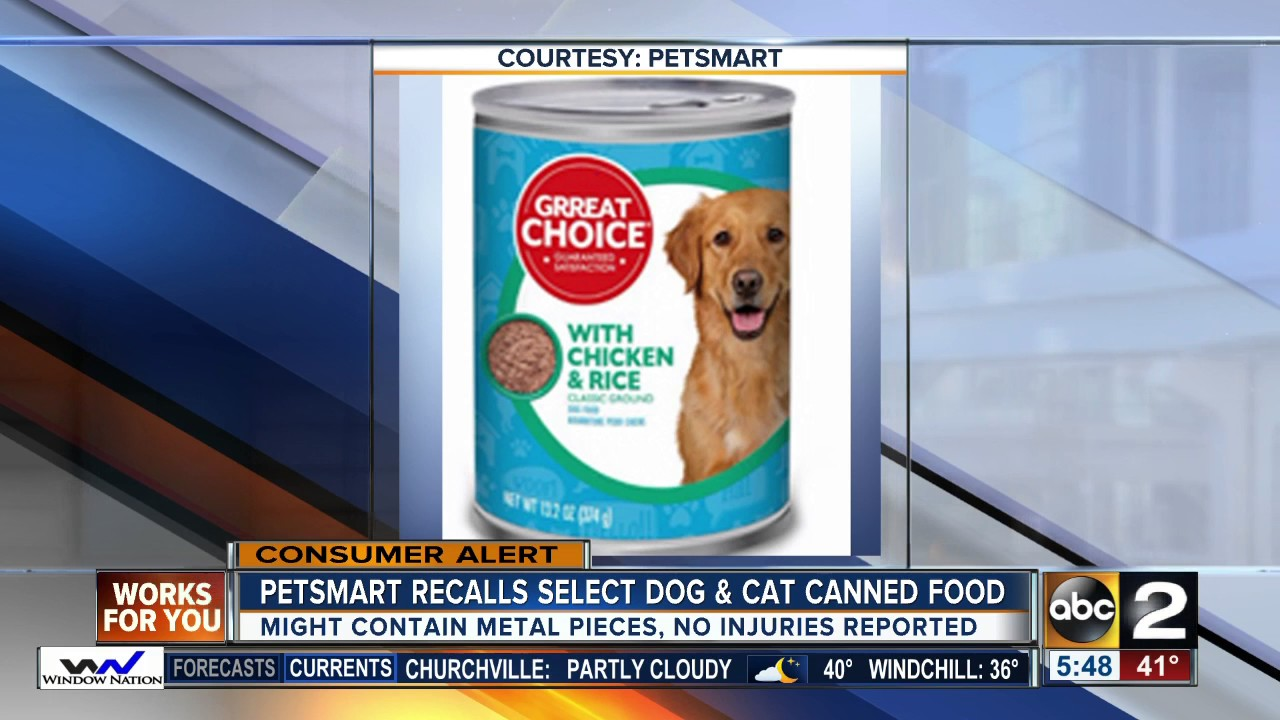 Wellness Cat Food Recalled Over Metal Concerns Youtube