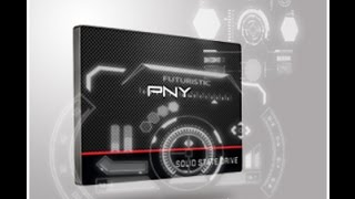 MINI REVIEW PNY SSD CS1311