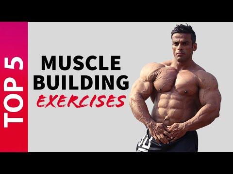 Top 5 Muscle Building Exercises | मसल्स बनाने के लिए करें ये 5 एक्सरसाइज | Yatinder Singh