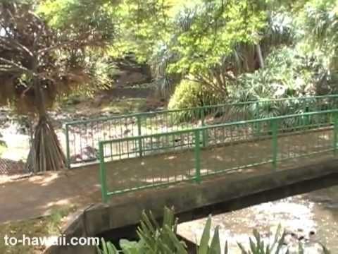Liliuokalani Botanical Garden, Oahu