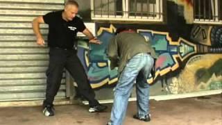 Krav maga - Techniques de base