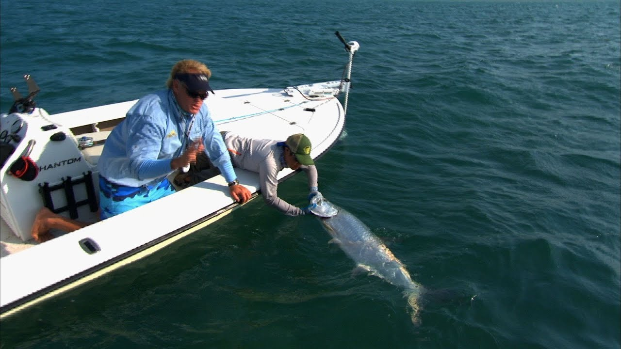 Fly fishing islamorada for tarpon on the florida keys for Fly fishing for tarpon