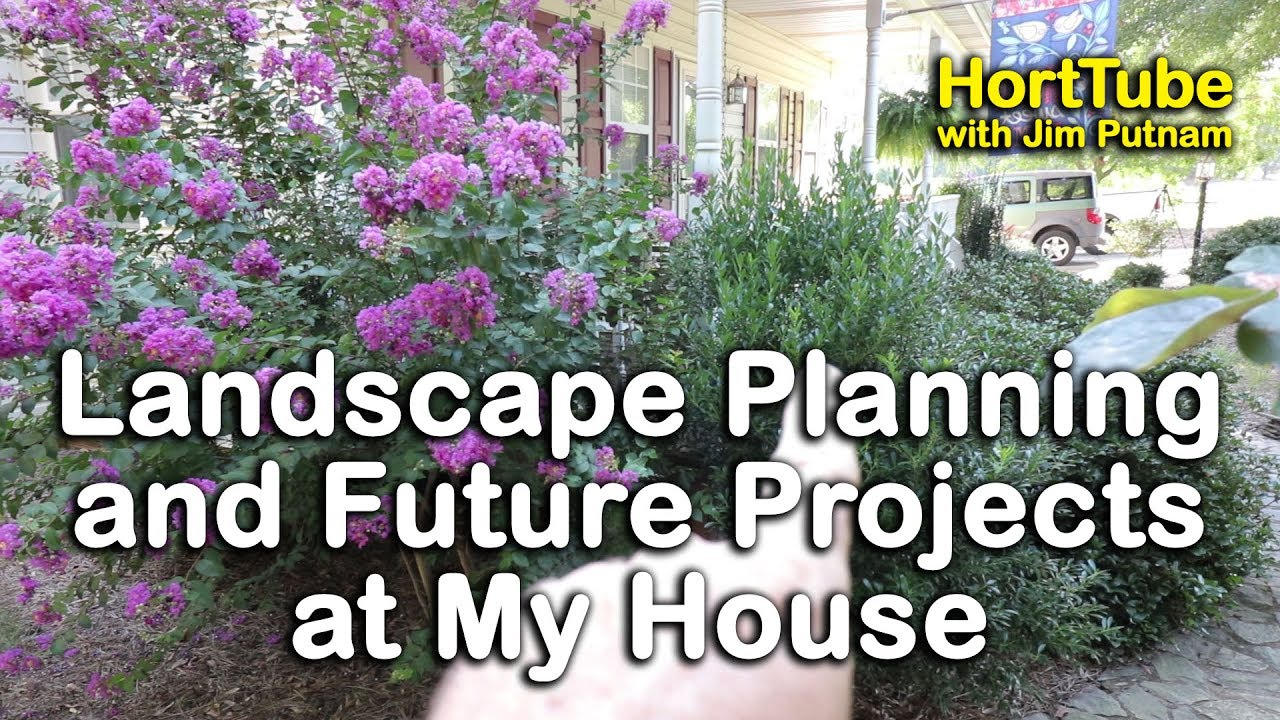 Planning For Future Landscaping In My Yard   Garden Tour   Upcoming  Installation Projects