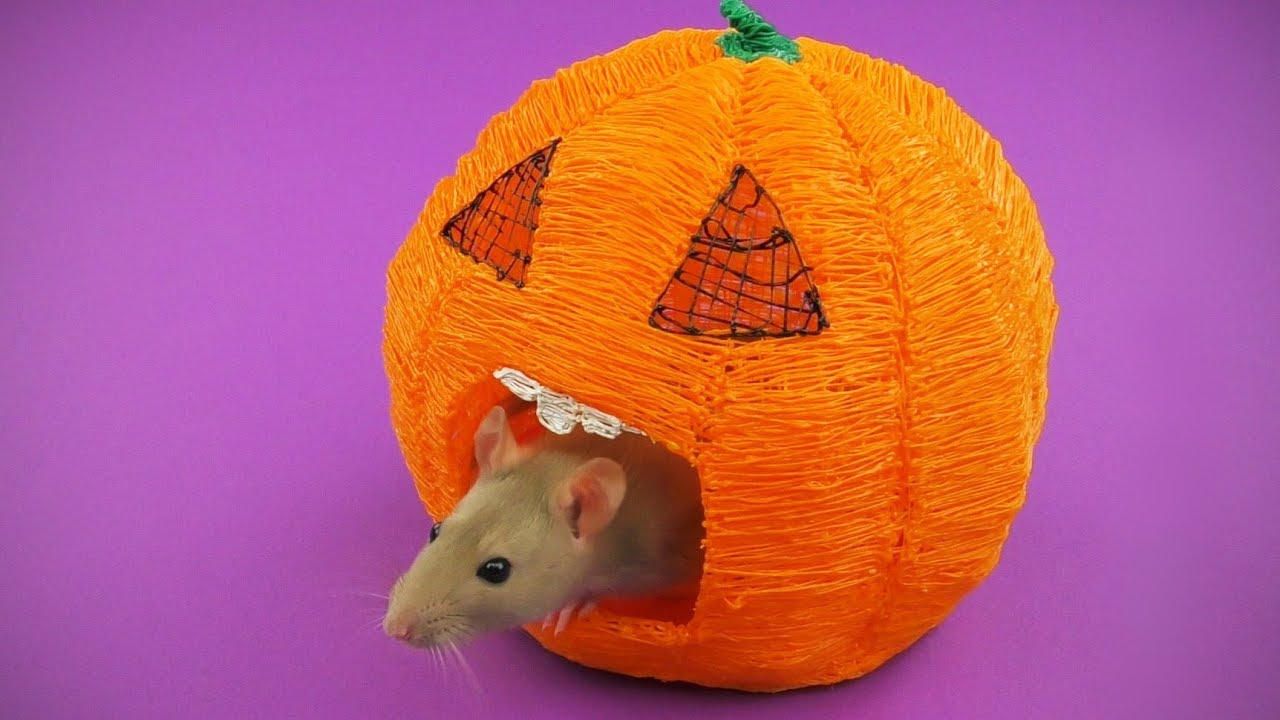 Halloween Pumpkin House For Rat with 3D Pen DIY - YouTube