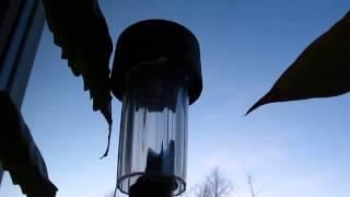 Włączanie się lampki solarnej-migotanie diody LED.