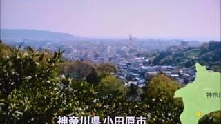 混声合唱団シグナス'94 常任指揮者 河野めぐみ ピアノ伴奏 篠田千晶 ...
