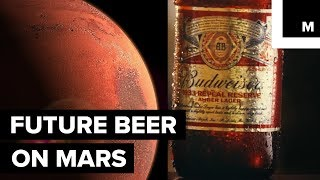 budweiser is one step closer to bringing beer to mars